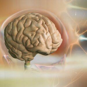 Mastering_Brain_Chemistry
