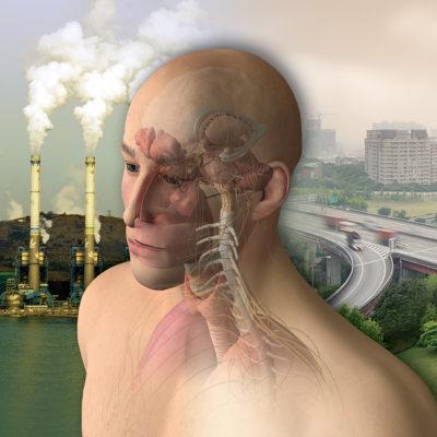 neuroendocrine_immunology_of_environmental_triggers