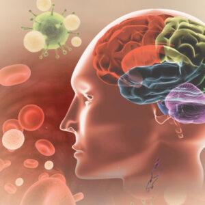 PART_6_Brain_Immune_Axis_RGB-2-400x400
