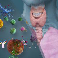 Food Sensitivity: The Hormone Connection™ How Hormones Impact Food Sensitivity Icon