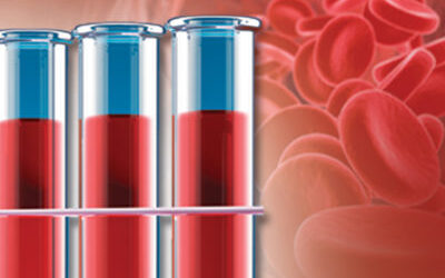 Fundamentals of Functional Blood Chemistry